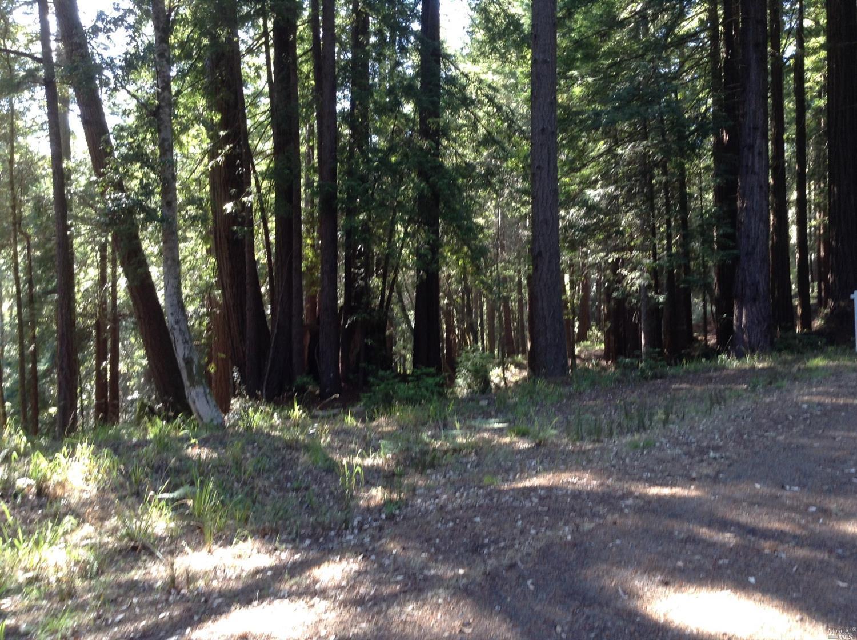 Listing 21816848 : 22047  Rust Drive, Timber Cove, CA, 95450  (photo 11)