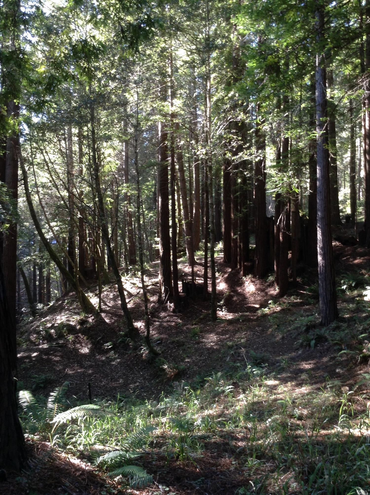 Listing 21816848 : 22047  Rust Drive, Timber Cove, CA, 95450  (photo 24)