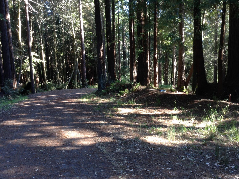 Listing 21816848 : 22047  Rust Drive, Timber Cove, CA, 95450  (photo 39)