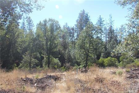9072 Fox Drive Cobb, California 95426, ,Lots & land,For Sale,9072 Fox,21826555