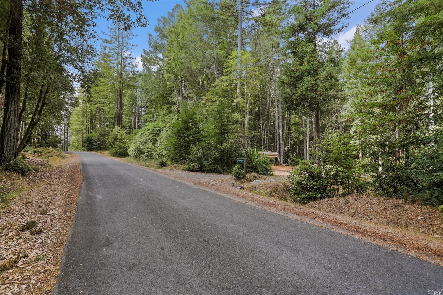22087 Ruoff Road Timber Cove, California 95450, ,Lots & land,For Sale,22087 Ruoff,21826587