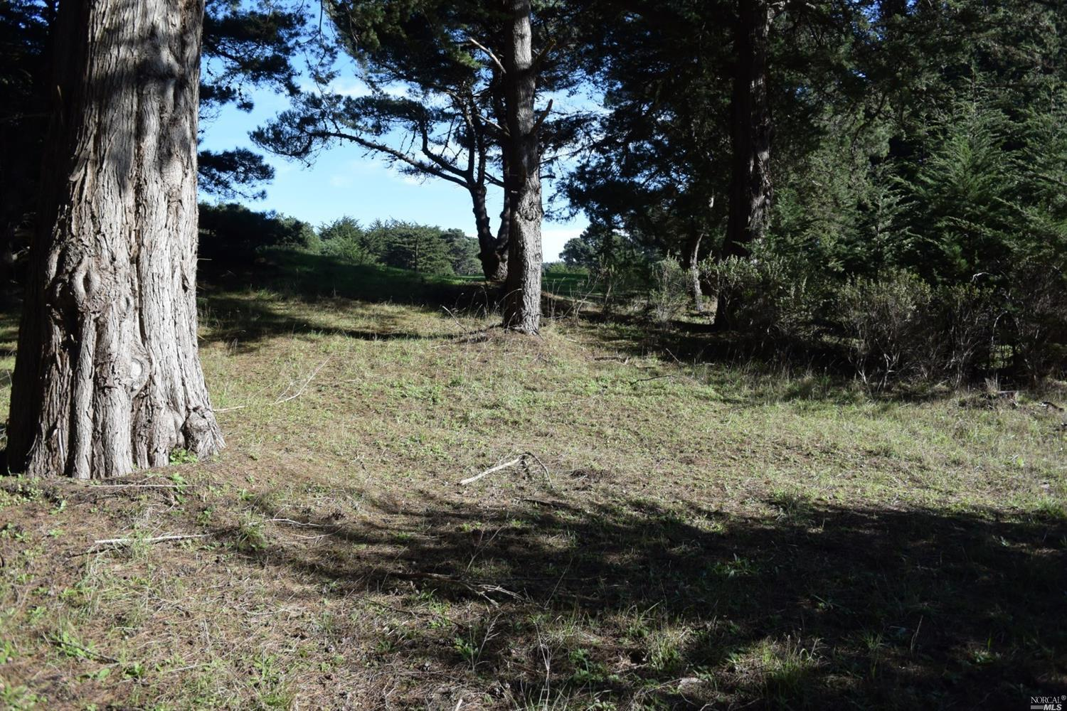 42288 Forecastle The Sea Ranch, California 95497, ,Lots & land,For Sale,42288 Forecastle,21826685