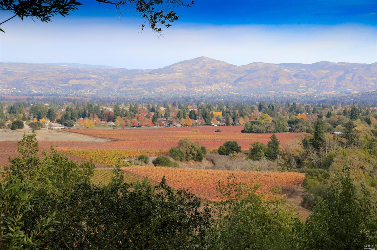 3111 REDWOOD ROAD, NAPA, CA 94558