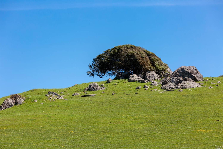 Photo of 5325 Chileno Valley Road, Petaluma, CA 94952