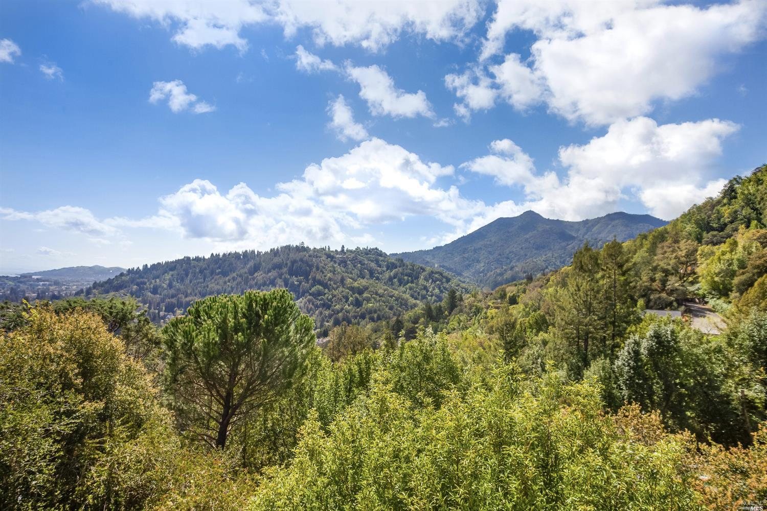 Captivating Mt. Tam and Bay views set the stage for this sun-filled, mid-century modern home in the highly desirable Seminary Area of San Anselmo. Located in a private setting at the end of a cul-de-sac and near trails galore!  Approximately 3.5 minutes to downtown San Anselmo, but a world away - feels like a vacation retreat! In addition to the 3BR + office, there is a separate guest room with a kitchenette and ensuite bath accessible from the lower level.    Best route:  Bolinas Road, to Oak Avenue, to South Oak.