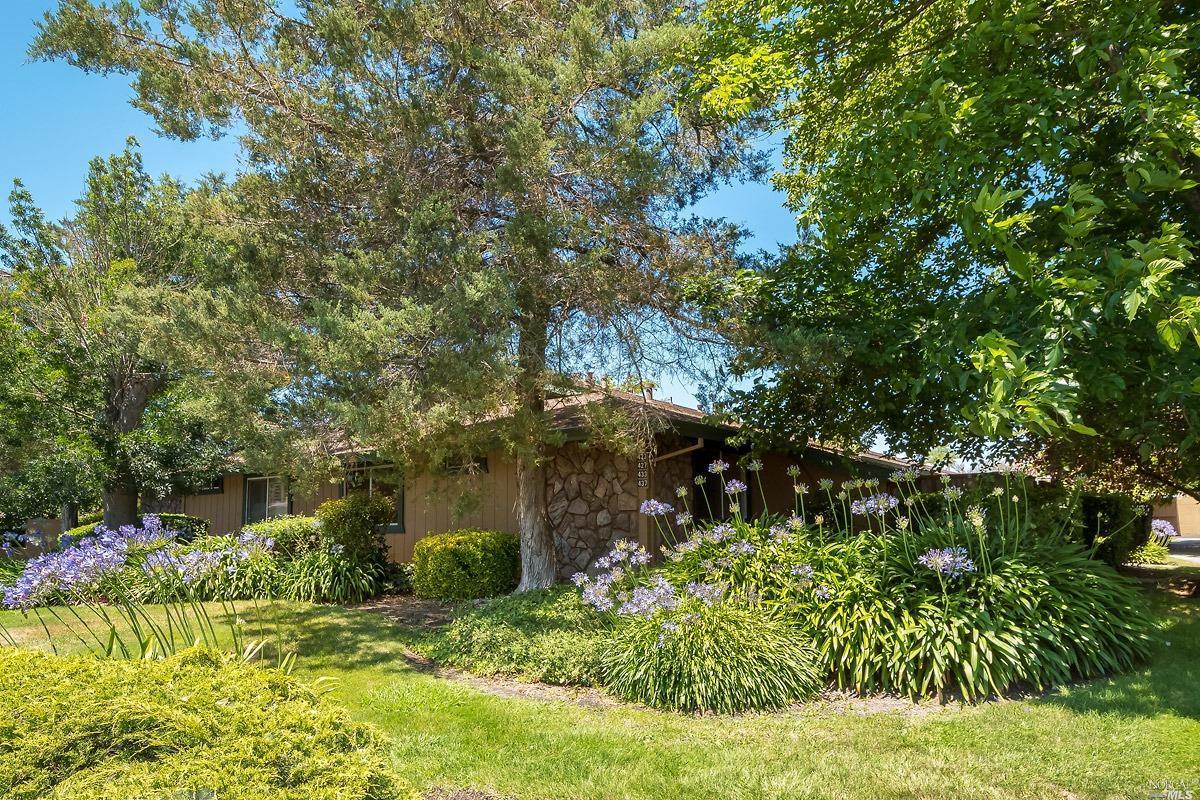 437 Lincoln Avenue, Cotati, CA