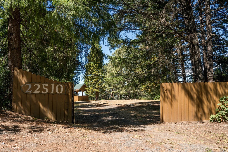 Address Not Disclosed, Cazadero, CA, 95421