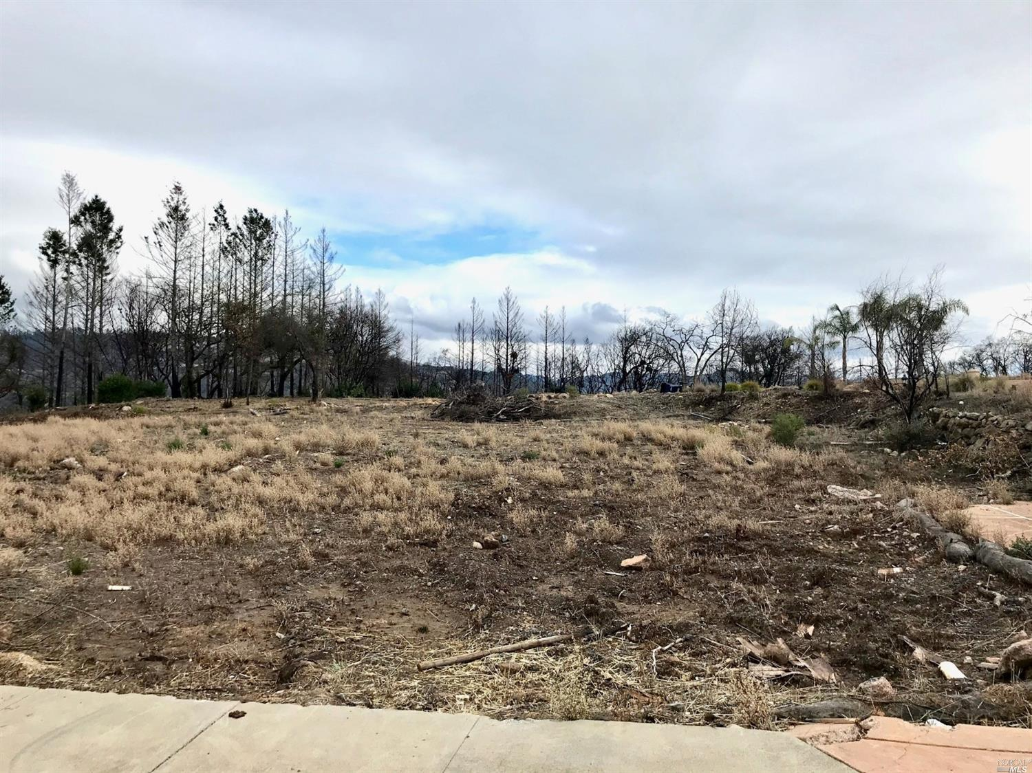 Located on a Cul De Sac this Prime Fountain Grove Level Lot is on Almost 1/2 Acre with Views in Cust