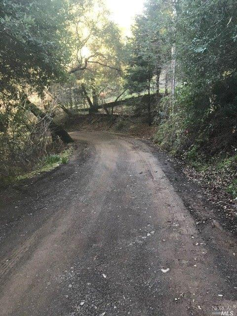 Slightly over 13 lush acres with a potential building site and 2 ample springs and a well.  Secluded, wooded parcel away from town , but only a 10 minute or so drive to downtown Napa, Oxbow market, etc.  Adjoining 62+AC parcel 034-260-023 also for sale to maximize privacy.