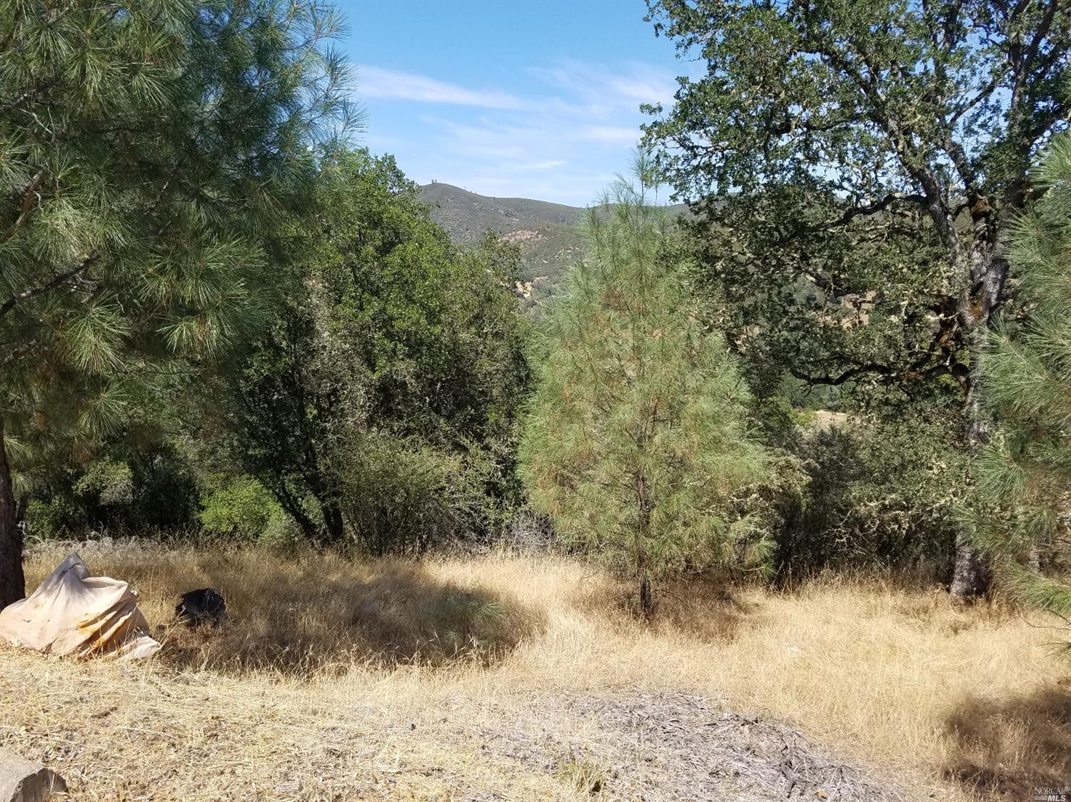 0 Harness Dr, Pope Valley, CA, 94567