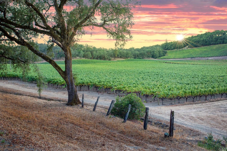 Photo of 1450 Ridge Oaks Road, Geyserville, CA 95441