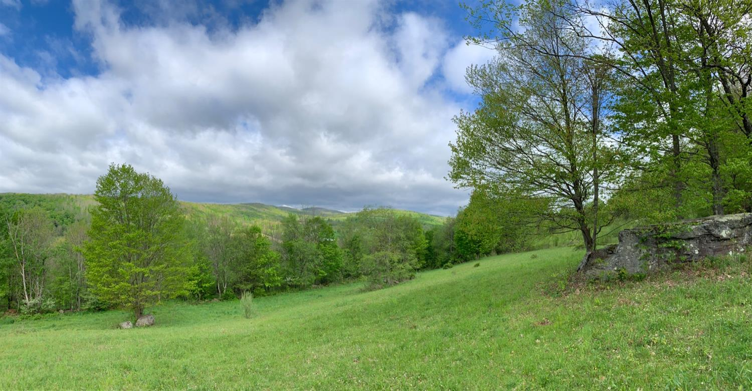 catskill-land-for-sale
